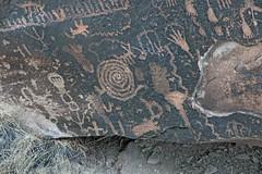 Petroglyphs / Petrified Forest National Park