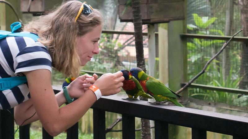 Girl with Rainbow Lorikeets, KL Bird Park, Kuala Lumpur, Malaysia