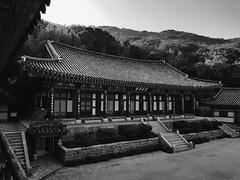 대성암,각해선림(覺海禪林) Beomeo-sa temple