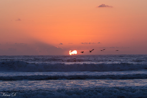 sunrise light colors sun sky birds flying ocean waves parallellines morning beautiful moment october 2018 saintaugustine coth5 ngc outstandingromanianphotographers