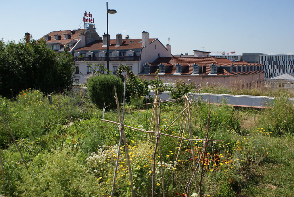 Jardins potagers sur les toits de l'échangeur de Perrache à Lyon.