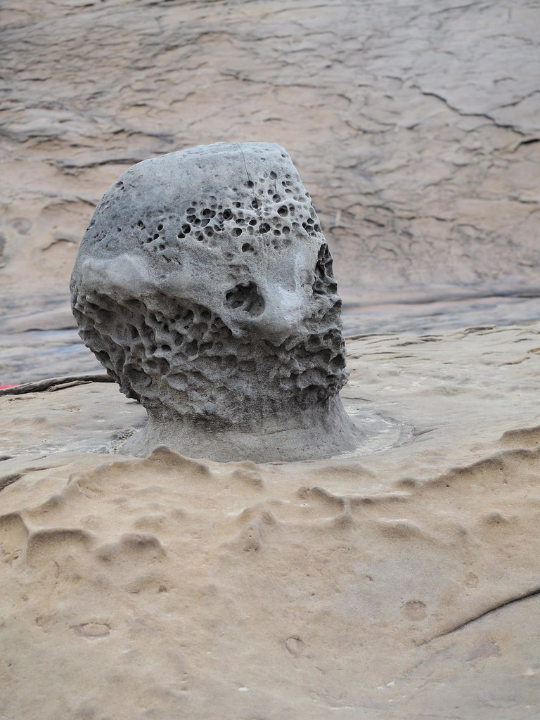 Spotted this stone popping out on the beach by itself. Looks like Alien's Head.