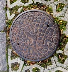 Hvidovre - ASA drain cover