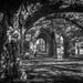 The Monastic ruin ....
