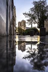 Paris, France - Notre-Dame