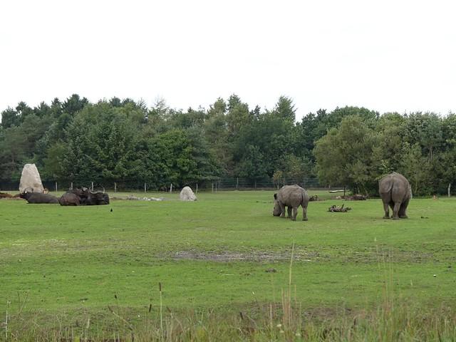 Gemeinschaftsanlage, Zoo Givskud