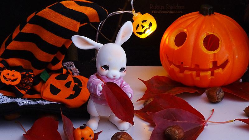 Rukiya's Dolls MAJ 14/10 ~Happy Halloween !~ p33 - Page 31 45651737081_6e40069a0b_c