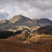 Tarnclose Crag and The Langdale Pikes