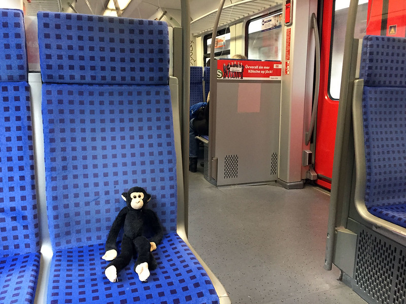 Monkey riding the S-Bahn