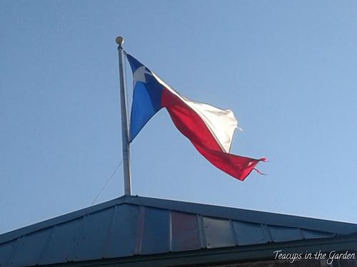 Texas Flag 2