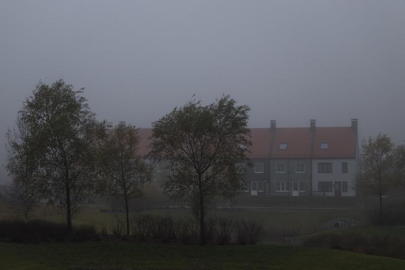 Misty Row