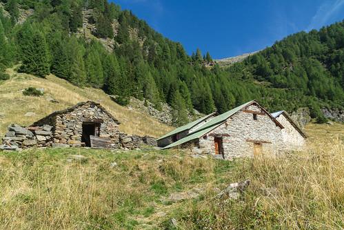 Alp de Calvaresc Sott