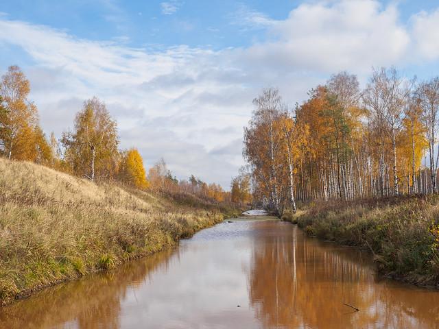 Full Autumn, Olympus E-M10MarkII, LUMIX G VARIO 14-42/F3.5-5.6 II