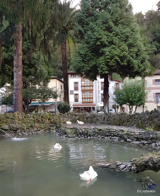 Fin de semana en el Concejo de Belmonte de Miranda, Asturias 10