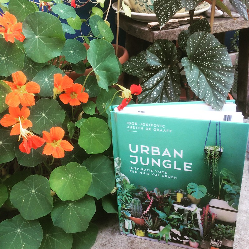 Bibliotheekboek Urban Jungle