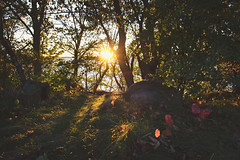 Sunset at the campsite...- Wellesley Island State Park, New York