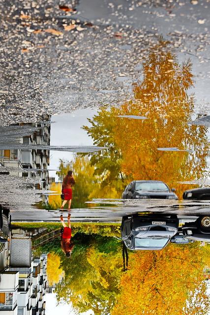 Осень уходит, Nikon D750, AF Zoom-Nikkor 24-85mm f/2.8-4D IF
