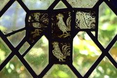 four heraldic cocks (15th Century)