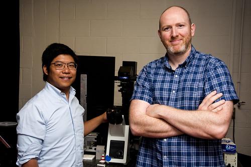 Super Resolution Fluorescence Microscopy