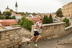 Do Česka se sjíždějí světové hvězdy orientačního běhu