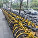 Rental Bike Lineup - Shenzhen