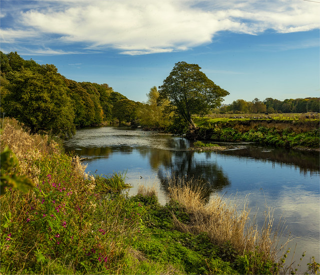 River Aire  Yorkshire