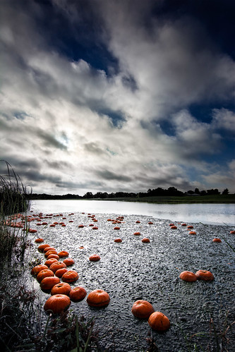 nikon d7100 tokina 11 20 murphy texas tx pumpkin pond haunted