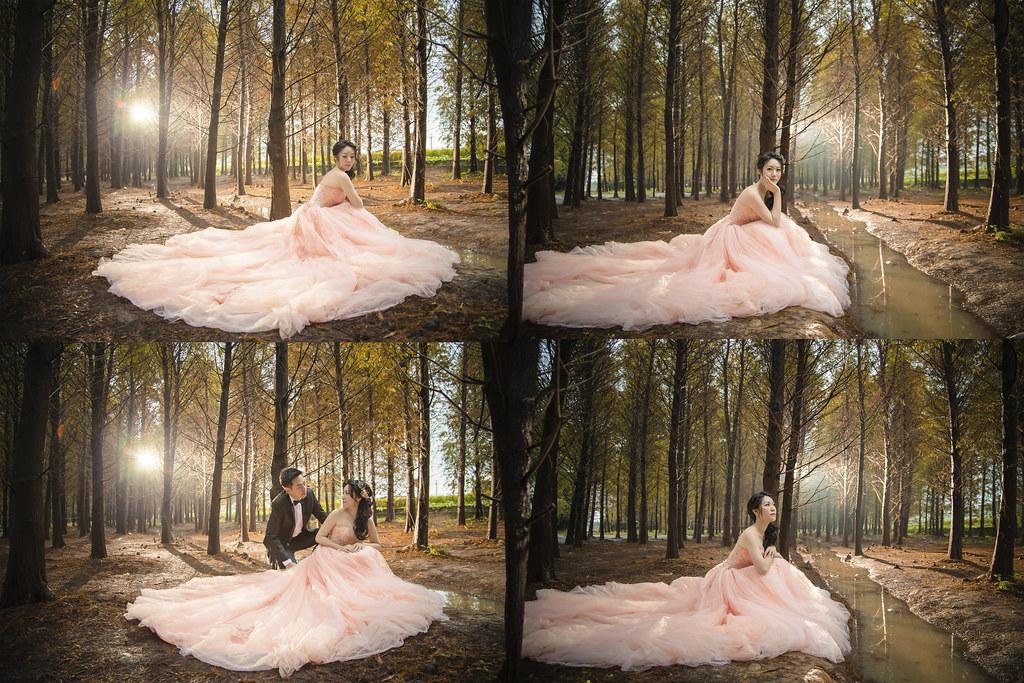 台灣婚紗旅拍,桃園,落羽松,婚紗攝影,婚紗相