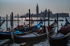 Visit Venice