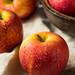 Raw Red Organic Envy Apples
