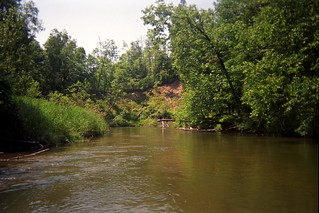 Manistee River Flows 1