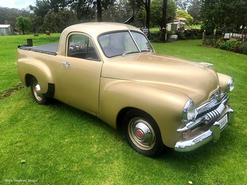 The Golden Holden - 1956 FJ Holden Ute