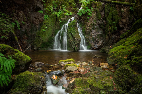 cowichanvalleyregionaldistric britishcolumbia canada cowichanvalleyregionaldistrict ca vancouverisland bc cobblehill shawniganlake water waterfall landscape landscapephotography longexposure longexposures pool moss atmosphere rocks rock rural tree trees temperaterainforest fern sony sonya7m2 a7m2