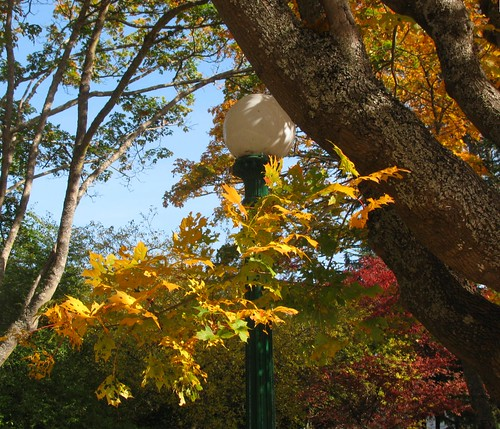 lamp post uplands oakbay