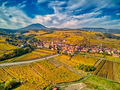 automne in Alsace