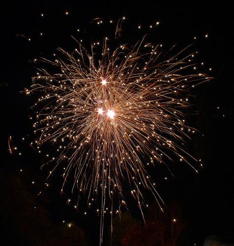 D20822  Firework Night