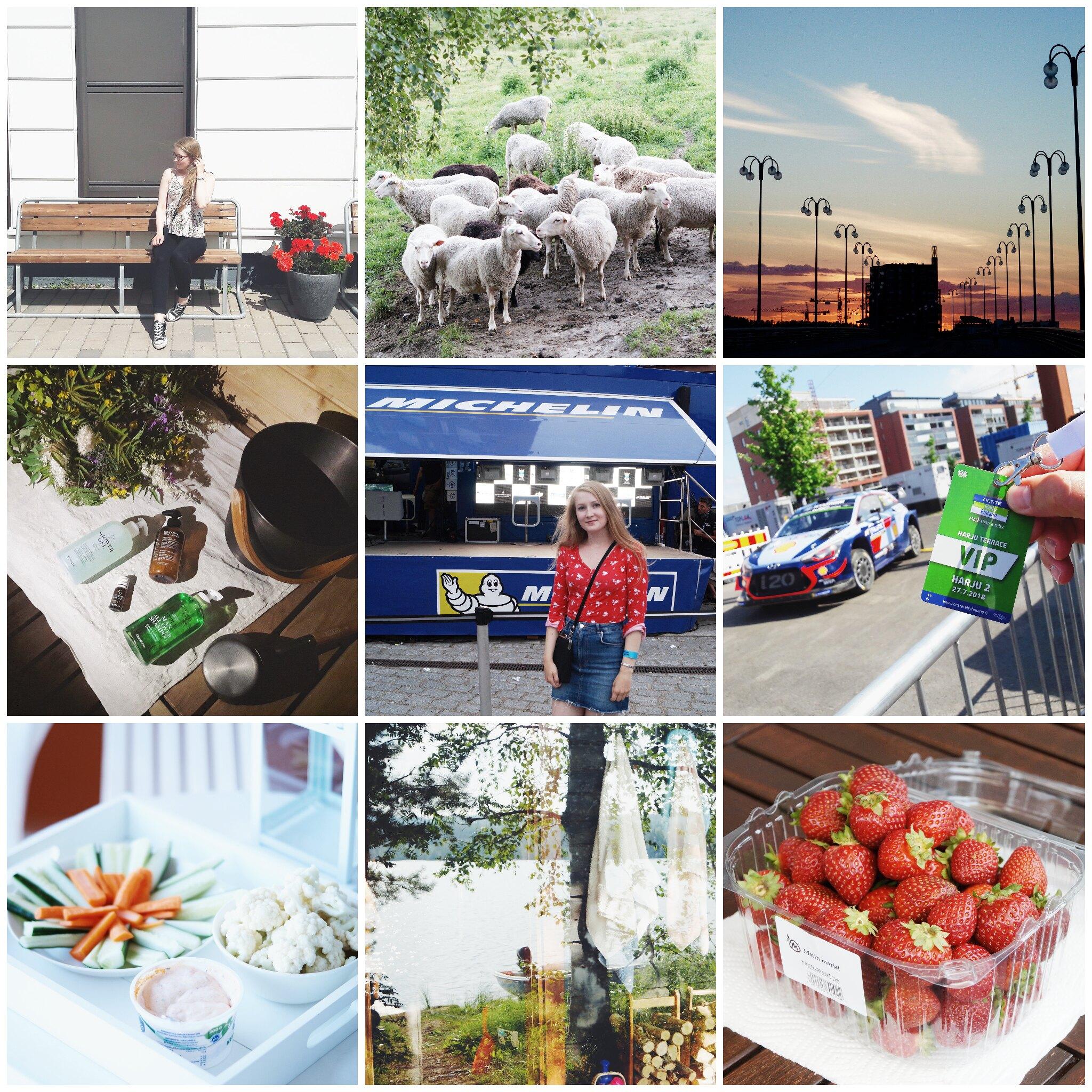 PicsArt_09-26-11.32.46