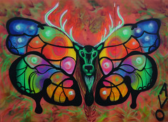 Stag butterfly wings