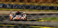 Road Atlanta - 2018 Petit Le Mans - Race Day