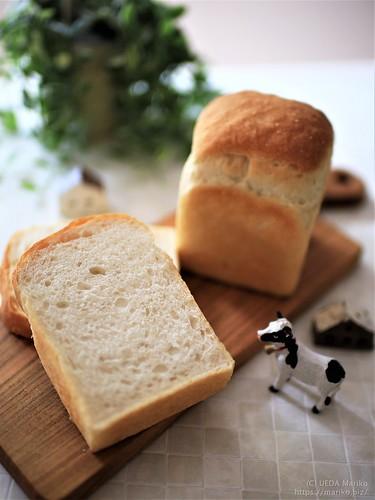 ハナマンテンの食パン 20181011-IMG_5566-1