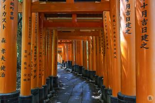 Fushimi Inari-taisha [JP]