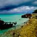 Shipwreck on Bimini Island in the Bahamas by ` Toshio '