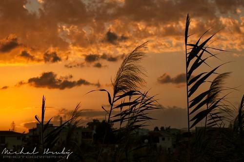 larnaca cyprus sunset
