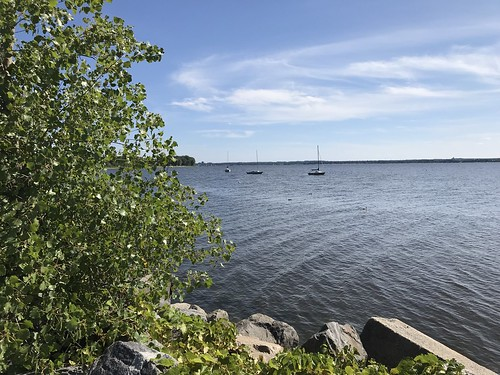 View from Aylmer Marina