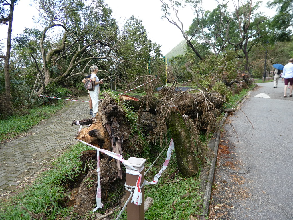 Typhoon damage The Peak, Hong Kong