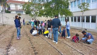 orto scuola putignano (3)