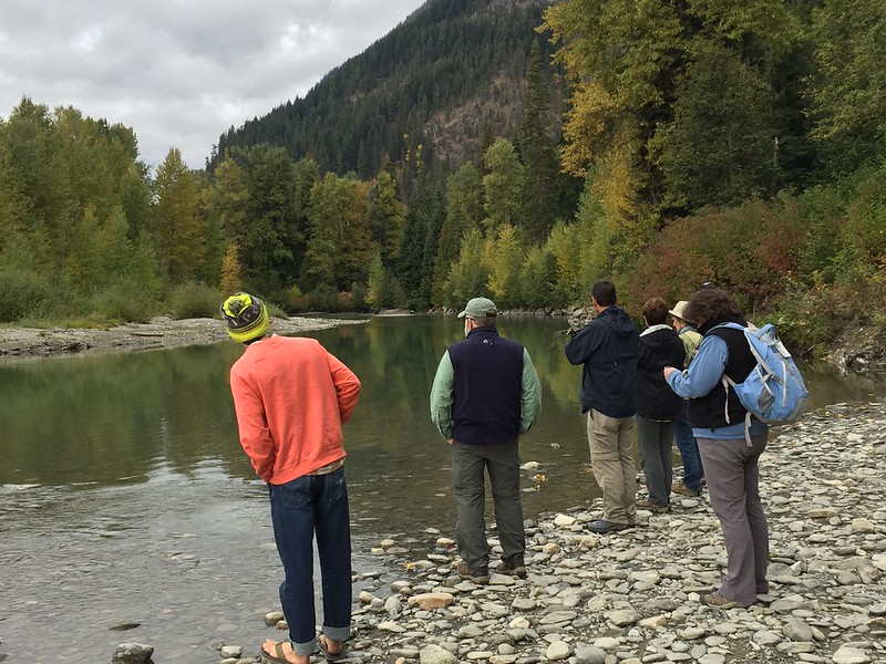 WEB:White River Salmon Walk 2018