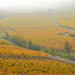 Jeu de brume by Philippe Haumesser (+ 6000 000 view)