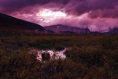 2016 / Day 7 / Twilight in Rapadalen valley