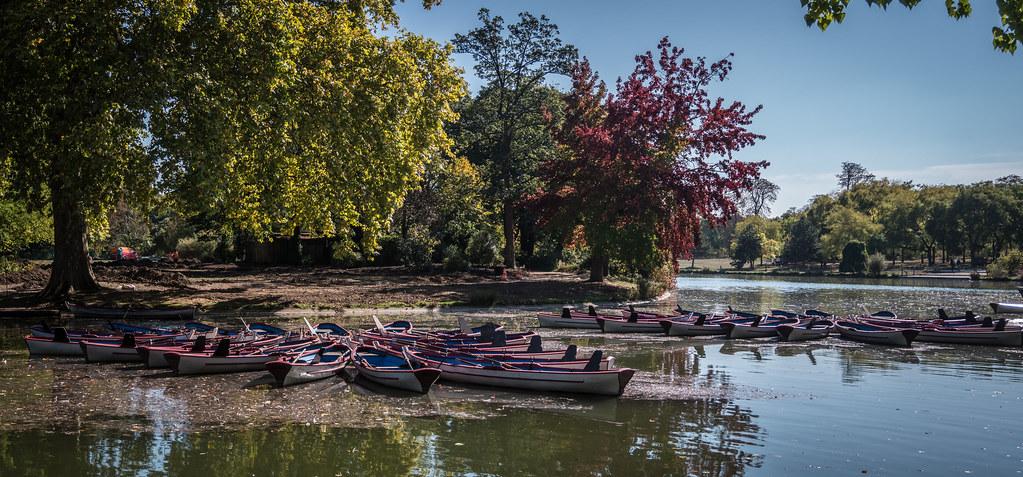 Sur le lac du Bois de Vincennes... 45368902391_f09244b587_b